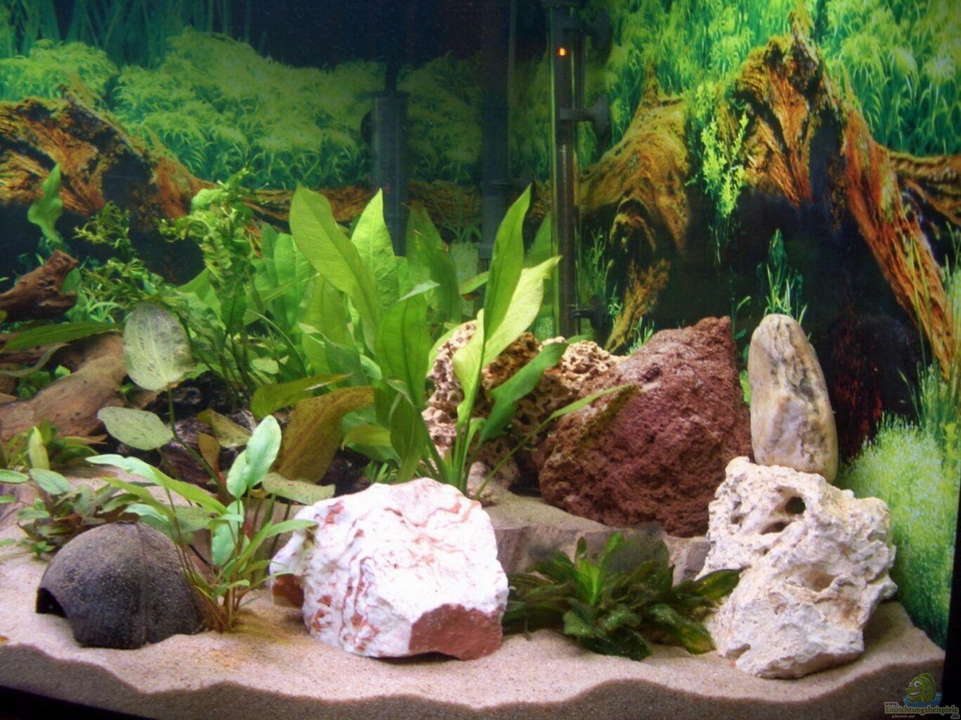 jad cw 182 dekorativer luftausstr mer krokodil aquarium deko l 26cm mit anschluss f r. Black Bedroom Furniture Sets. Home Design Ideas