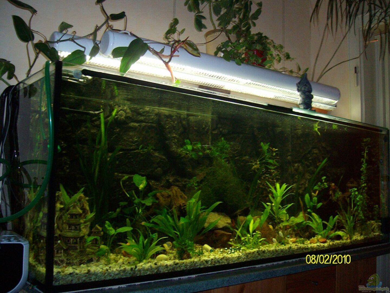 aquarium von sandmann73 becken 16345. Black Bedroom Furniture Sets. Home Design Ideas