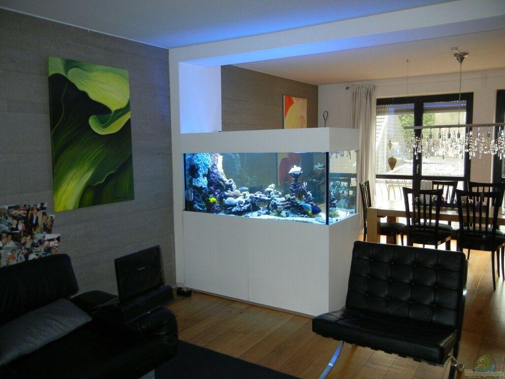 Meerwasser Aquarium Raumteiler Riffaufbau : Aquarium Von Juwa L  Einrichtungsbeispiele