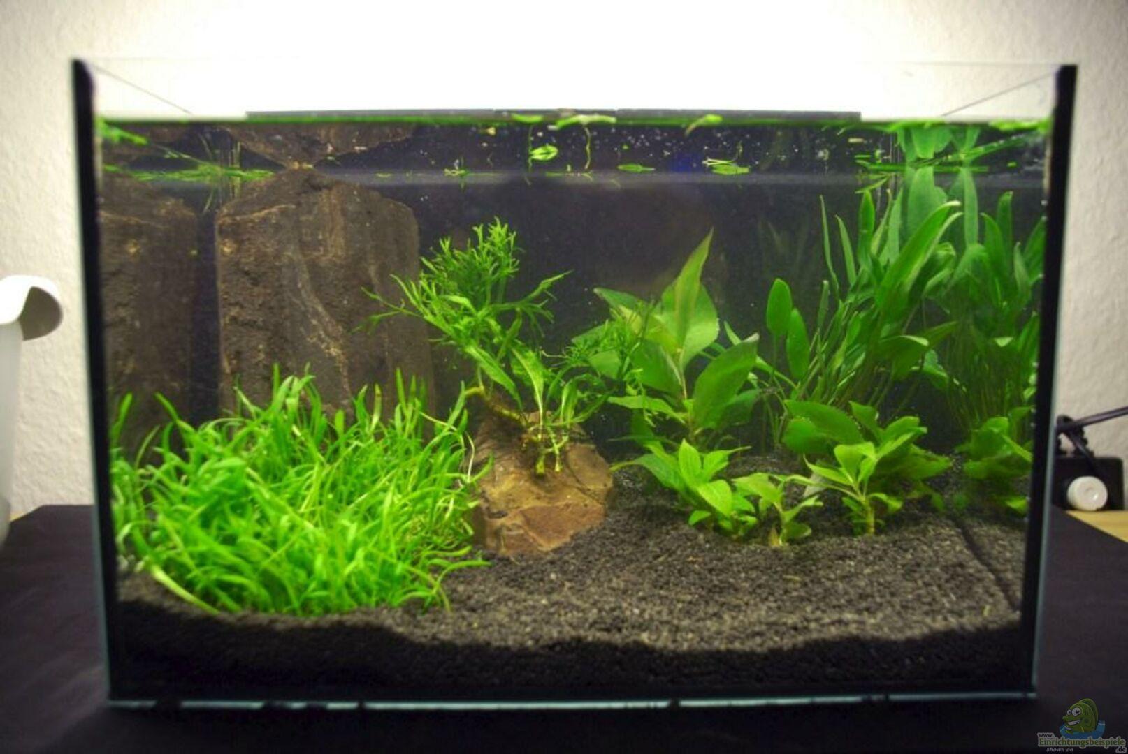 aquarium von emma 16746 12l f r phs. Black Bedroom Furniture Sets. Home Design Ideas