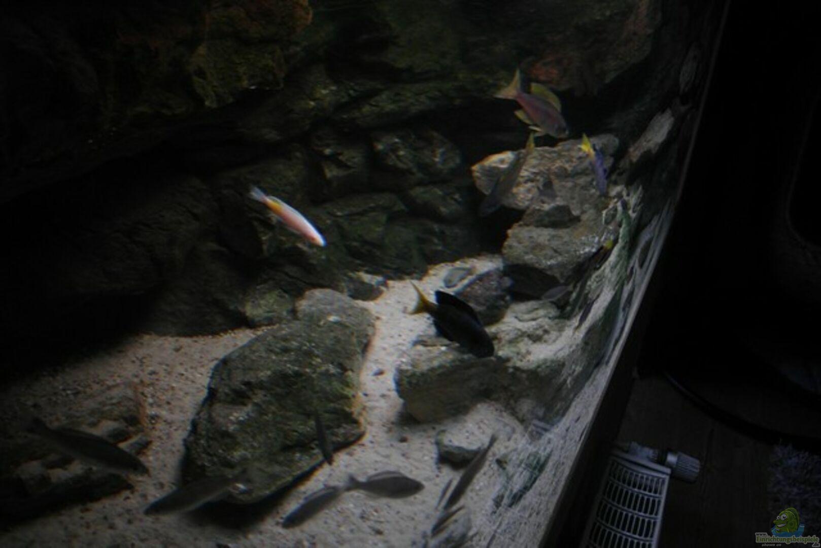 Forex aquarium abdeckung