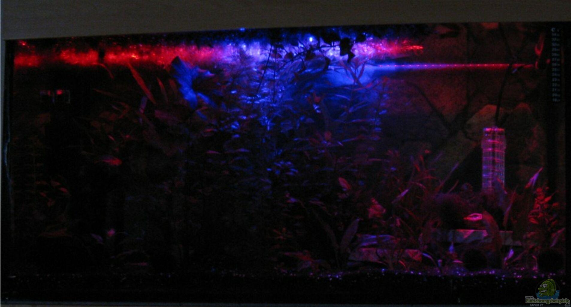 Durchlauferhitzer durchlauferhitzer aquarium for Aquarium heizen