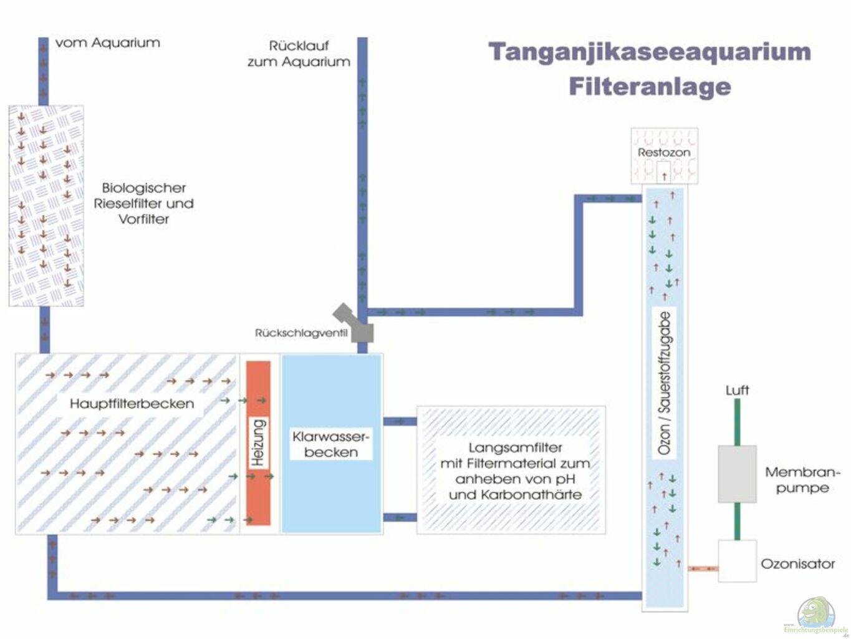 Example No 1752 from the category lake tanganyika