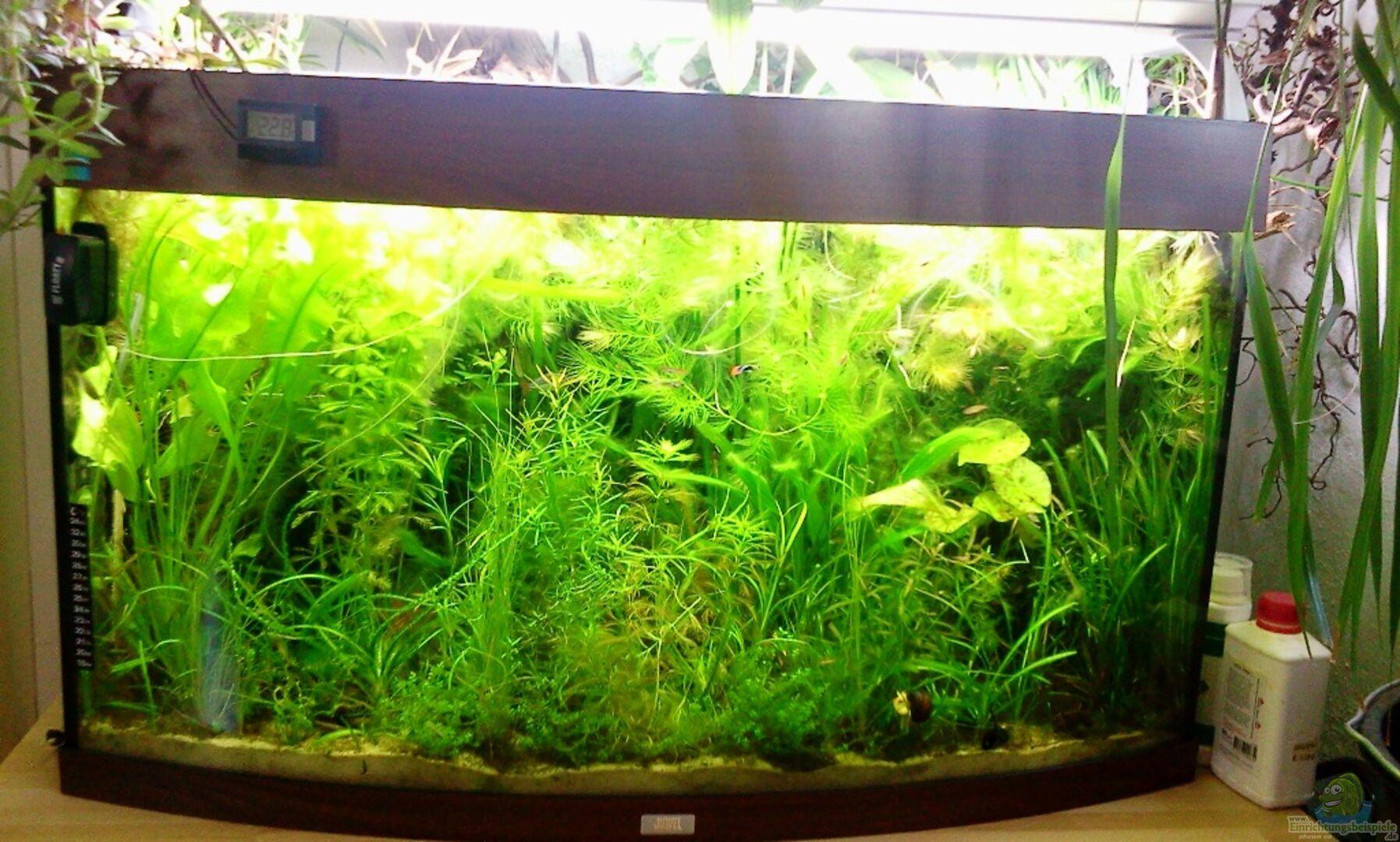 Aquarien Aquarium 180 Liter