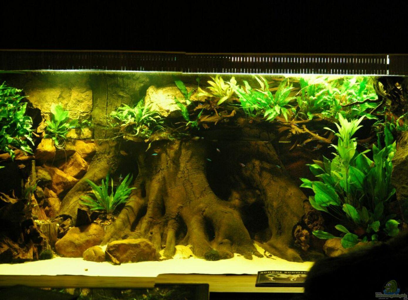 aquarium von horst sander becken 18099. Black Bedroom Furniture Sets. Home Design Ideas