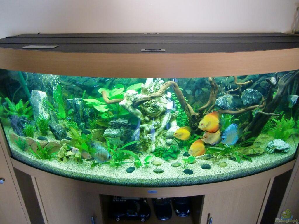 Aquarium von ecosys juwel vision 450 for Aquarium juwel