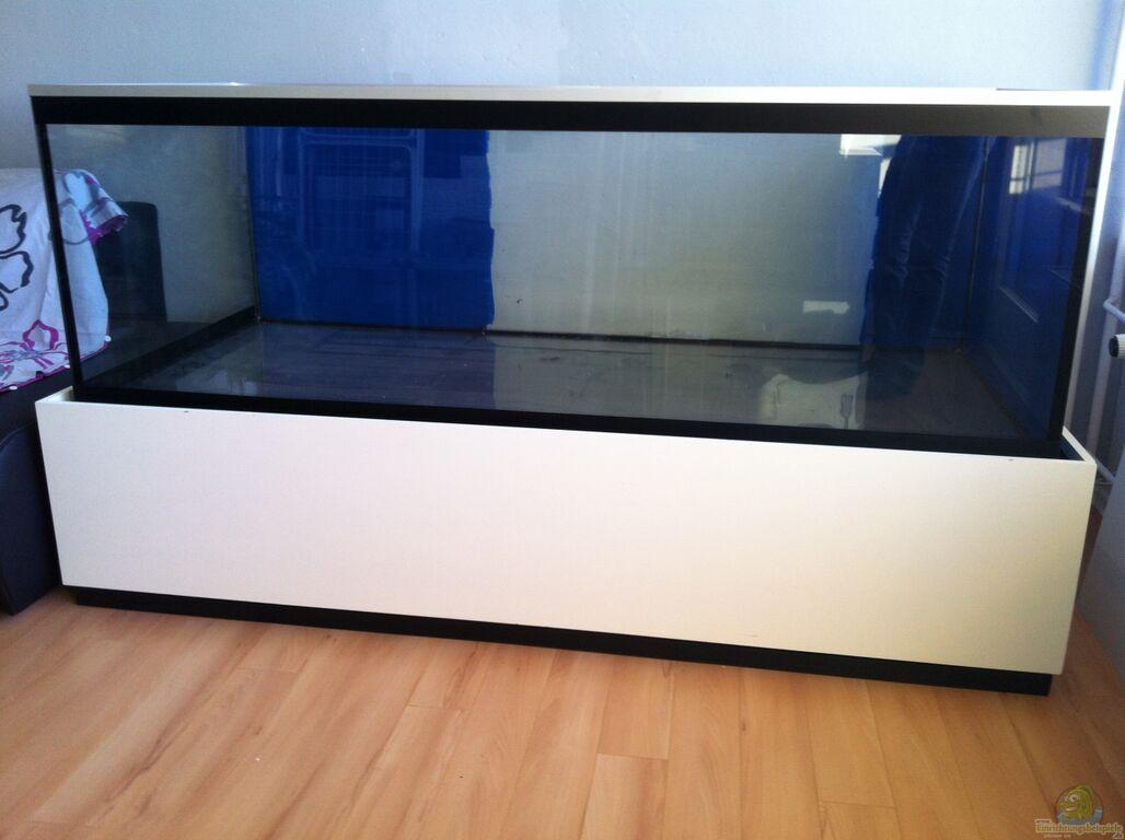 Aquarium Unterschrank Ikea : aquarium von andriko mbuna meets basalt ~ Watch28wear.com Haus und Dekorationen