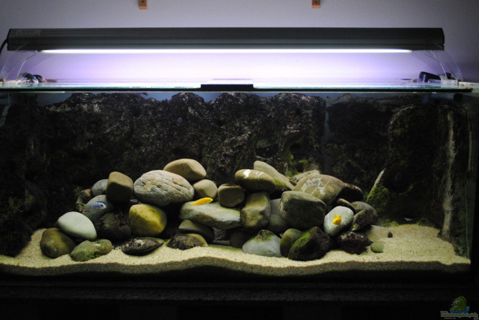 aquarium von robert hornung becken 18370. Black Bedroom Furniture Sets. Home Design Ideas