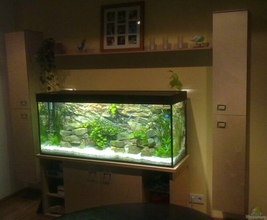Aquarium von generatorg generatorg s malawitank for Aquarium wohnzimmertisch