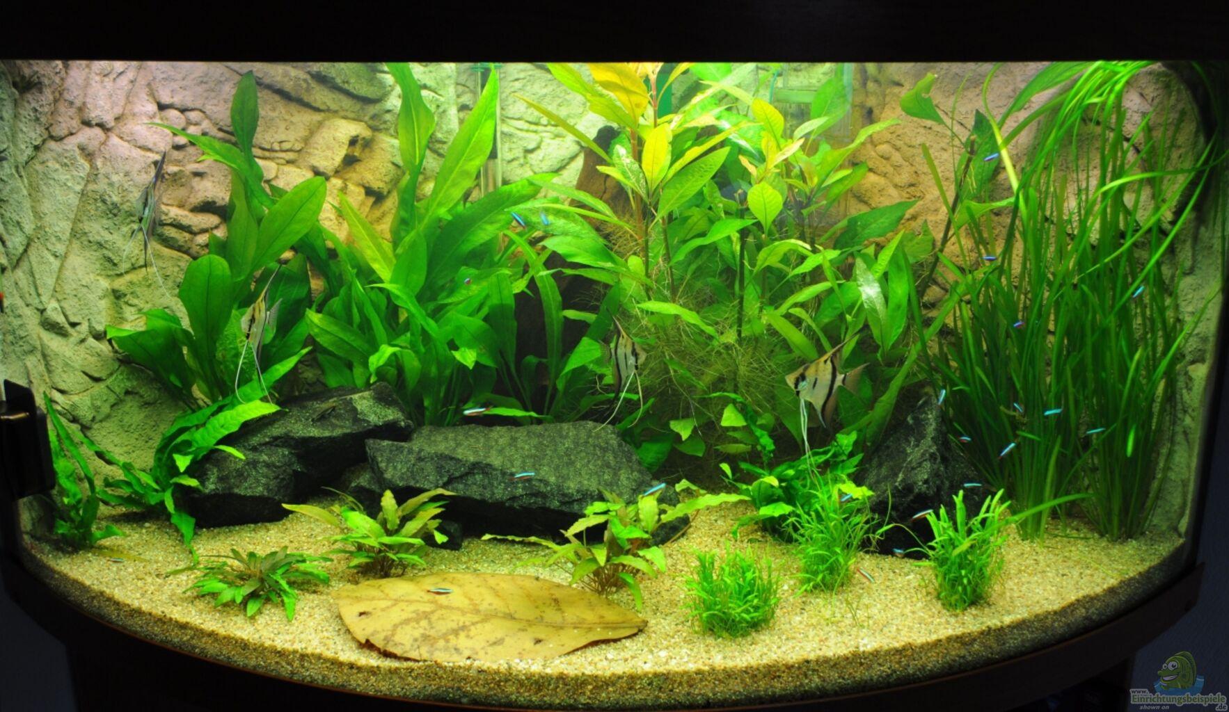 aquarium von jmvitt woha meta