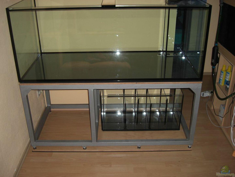 becken steht soweit sicher aus nur noch 630 liter amazonas beispiel von matoba. Black Bedroom Furniture Sets. Home Design Ideas