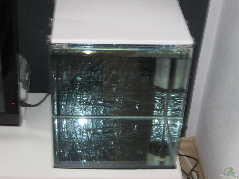 aquarium von subeaste 18706 nano cube 60l. Black Bedroom Furniture Sets. Home Design Ideas
