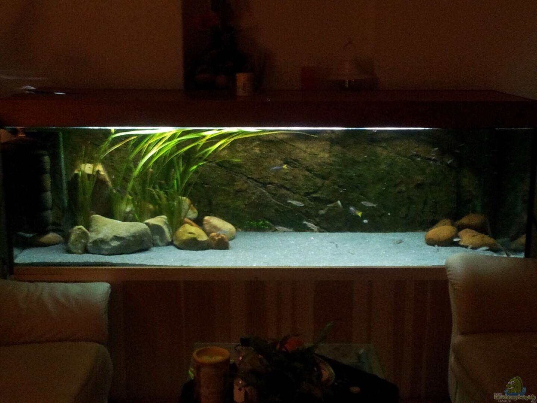 Aquarium von mara rocks becken 18802 for Aquarium becken