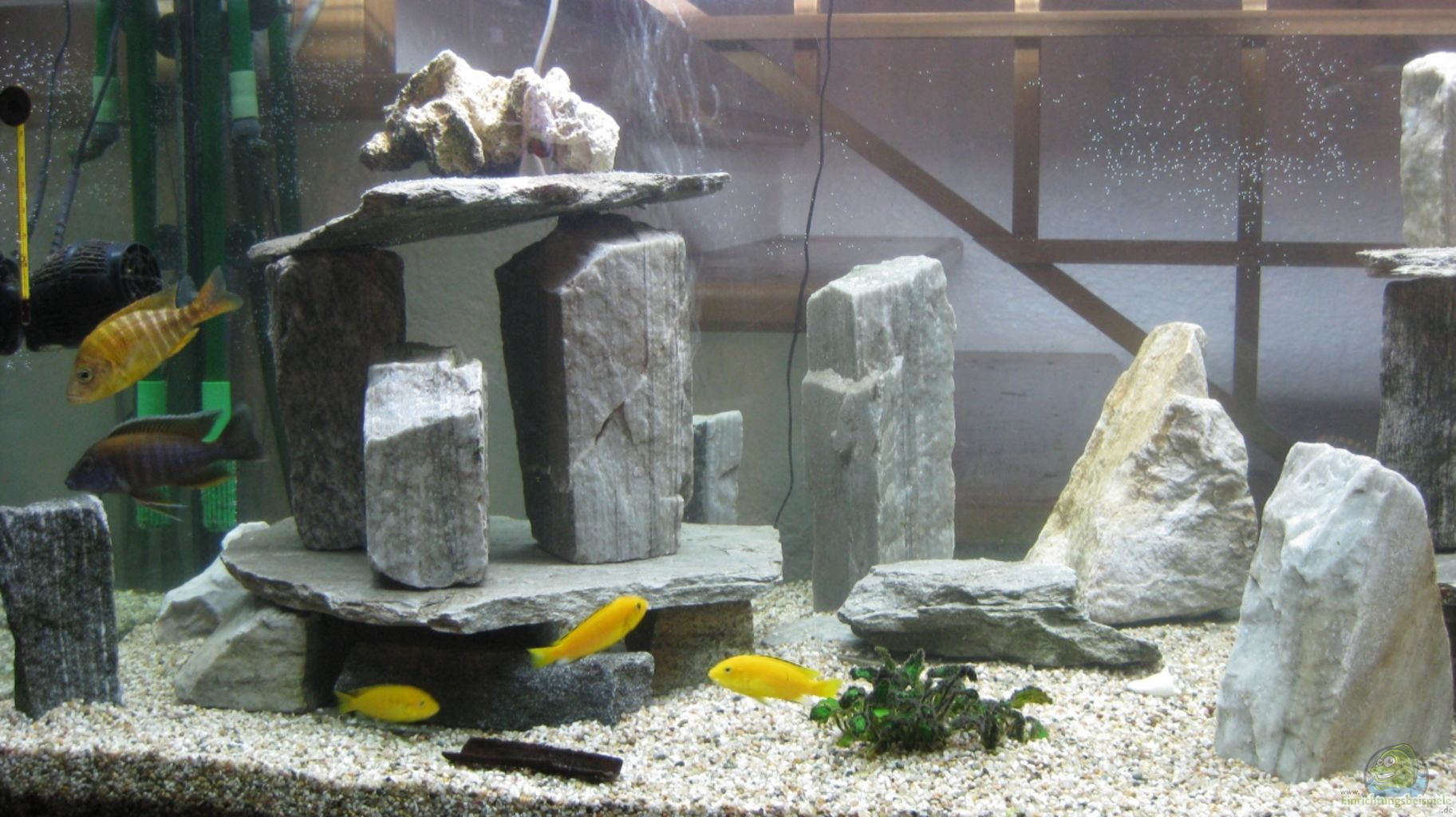 decor aquarium fait maison gallery of charneca de caparica with photos top holiday lettings. Black Bedroom Furniture Sets. Home Design Ideas