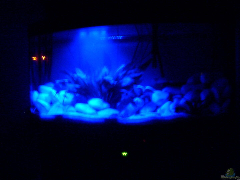 Chrstian seupel 19205 juwel aquarium vision 260 mit for Aquarium unterschrank
