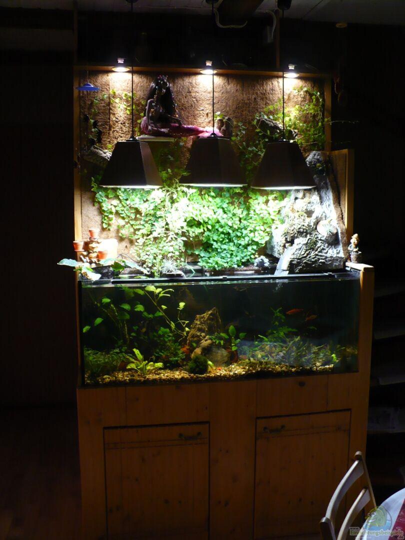 aquarium von werner lehmann becken 1921. Black Bedroom Furniture Sets. Home Design Ideas