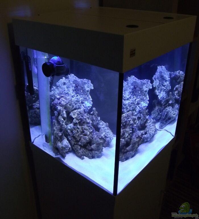 Aquarium von dr manhattan midi cube meerwasser for Aquarium cube