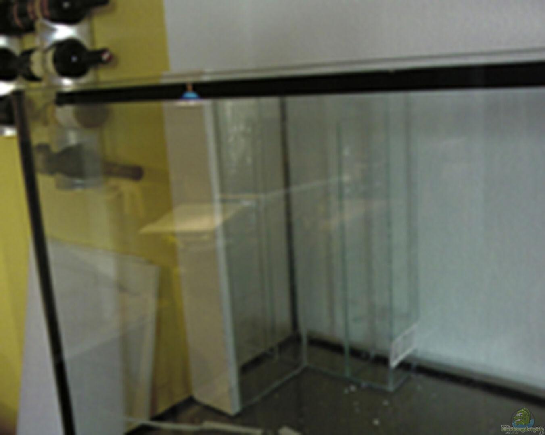 aquarium von christian jung becken 1965. Black Bedroom Furniture Sets. Home Design Ideas