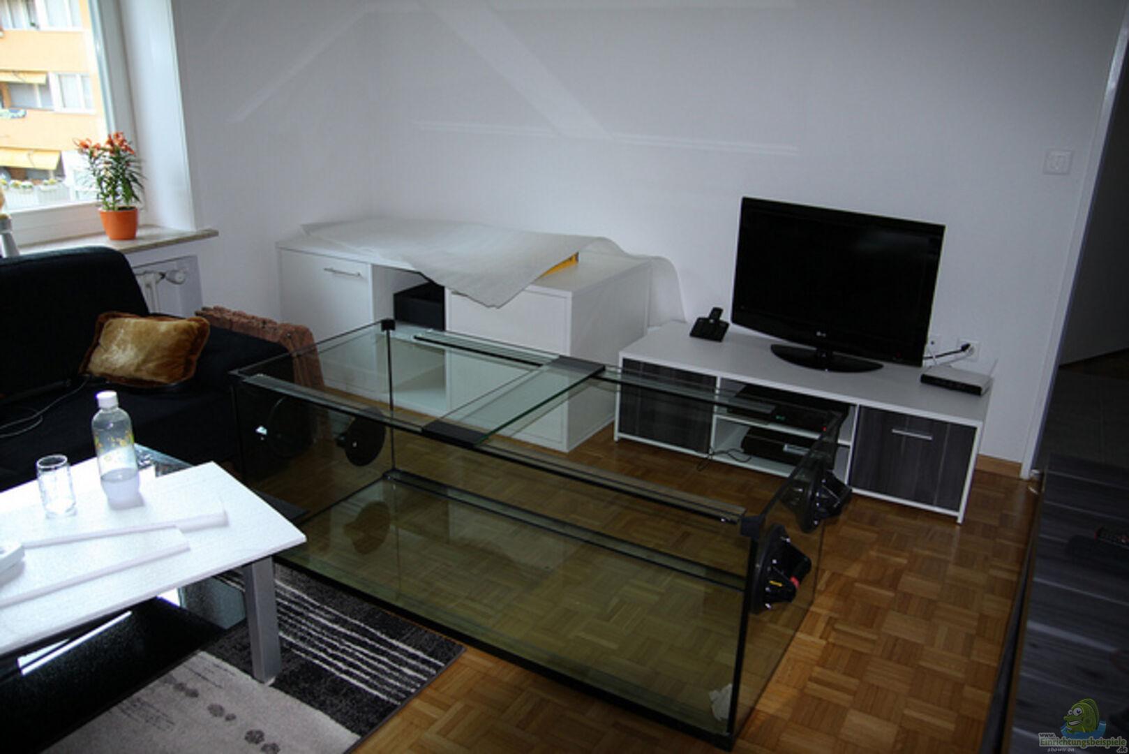 Aquarium Diskus Tank