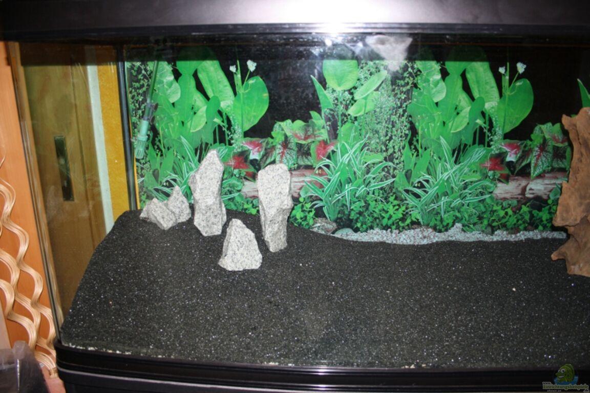 aquarium von wolle04 mein gro es becken. Black Bedroom Furniture Sets. Home Design Ideas