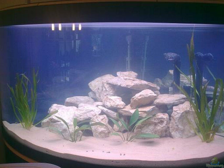aquarium von malawi0611 fluval venezia eckaquarium. Black Bedroom Furniture Sets. Home Design Ideas