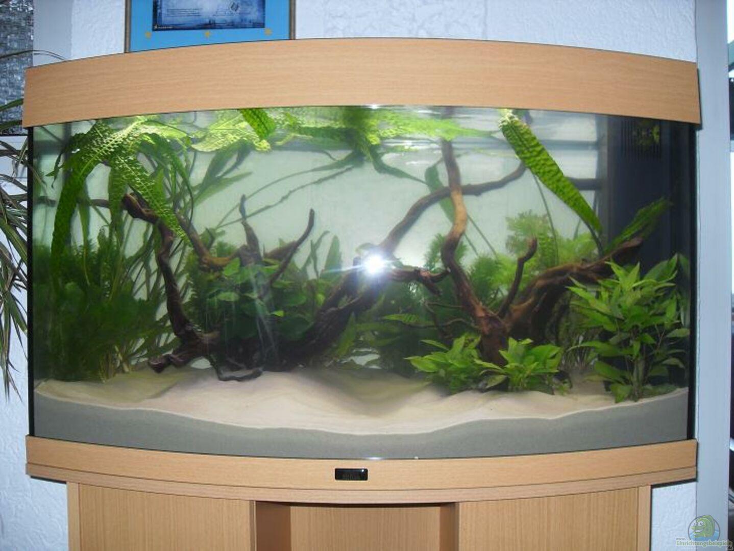 aquarium von crazy68 20280 juwel vision 180. Black Bedroom Furniture Sets. Home Design Ideas