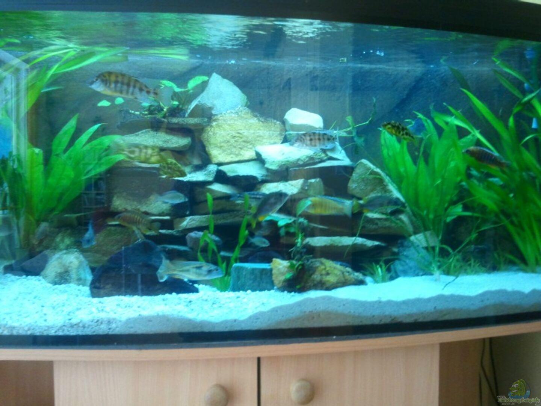 aquarium von relkov becken 20343. Black Bedroom Furniture Sets. Home Design Ideas