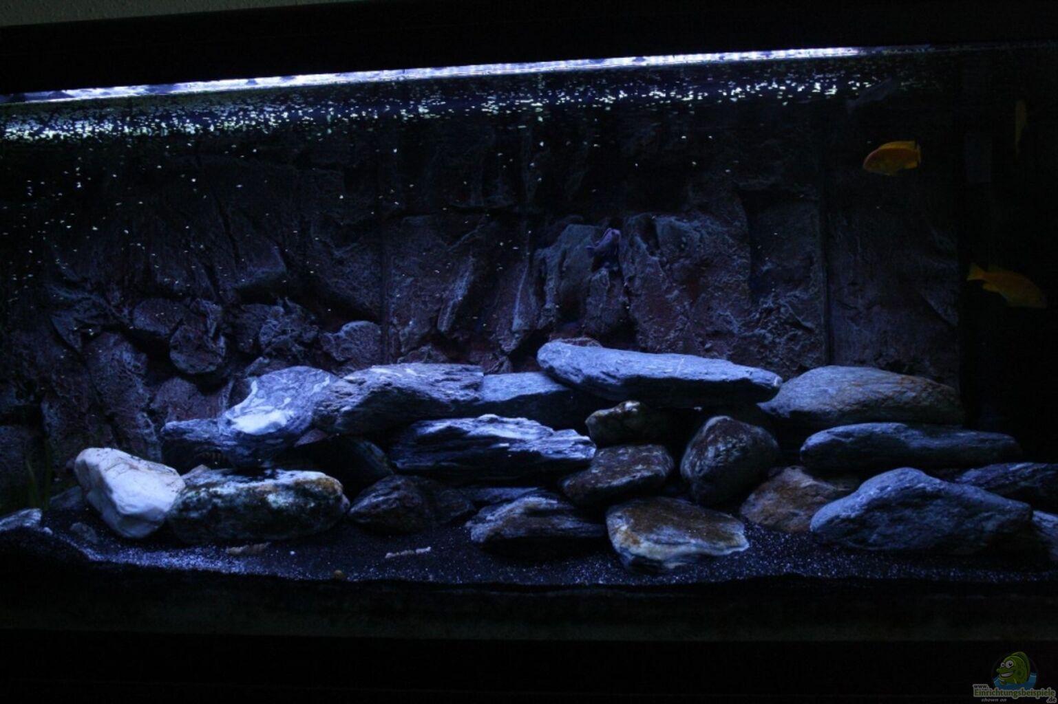 aquarium von skipper1202 malawi im schlafzimmer. Black Bedroom Furniture Sets. Home Design Ideas