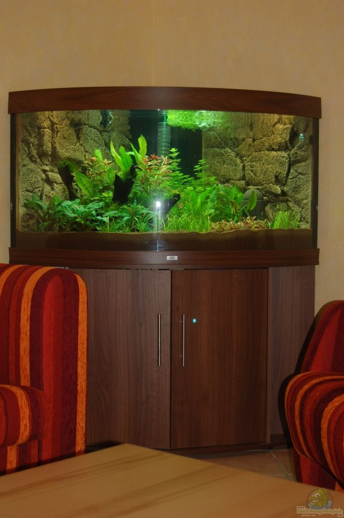 aquarium von sven seibert juwel trigon 350. Black Bedroom Furniture Sets. Home Design Ideas