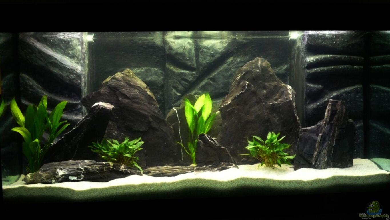aquarien mit schiefer als dekoration. Black Bedroom Furniture Sets. Home Design Ideas