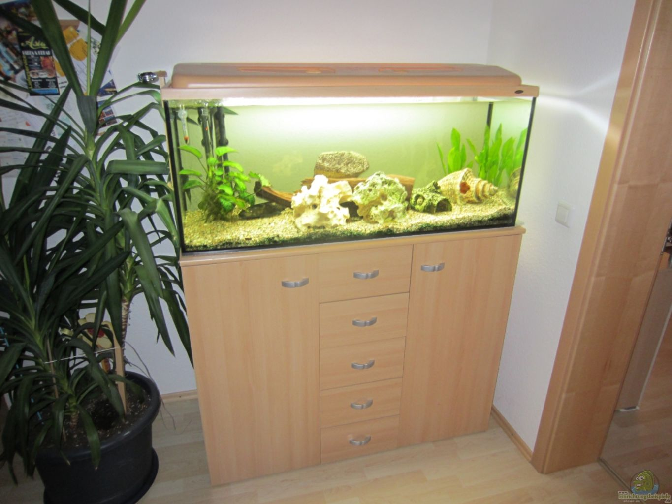 Aquarium von w rner32 becken 21999 for Aquarium 120x40x50
