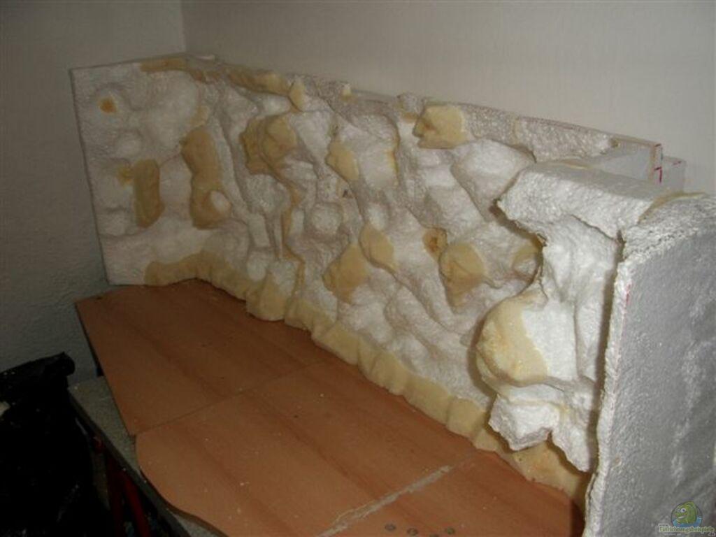 aquarium von ronny kretschner becken 2203. Black Bedroom Furniture Sets. Home Design Ideas