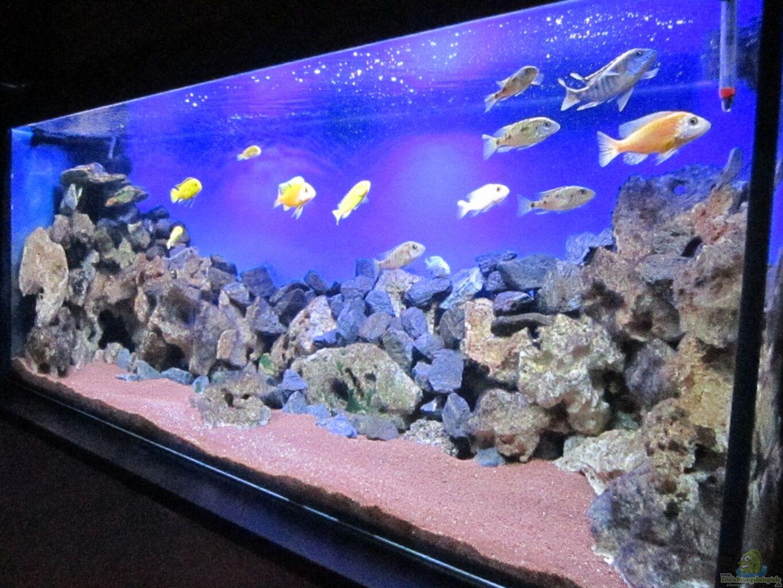 Aquarium Deko Selber Bauen: Steine für aquarium selber bauen ...