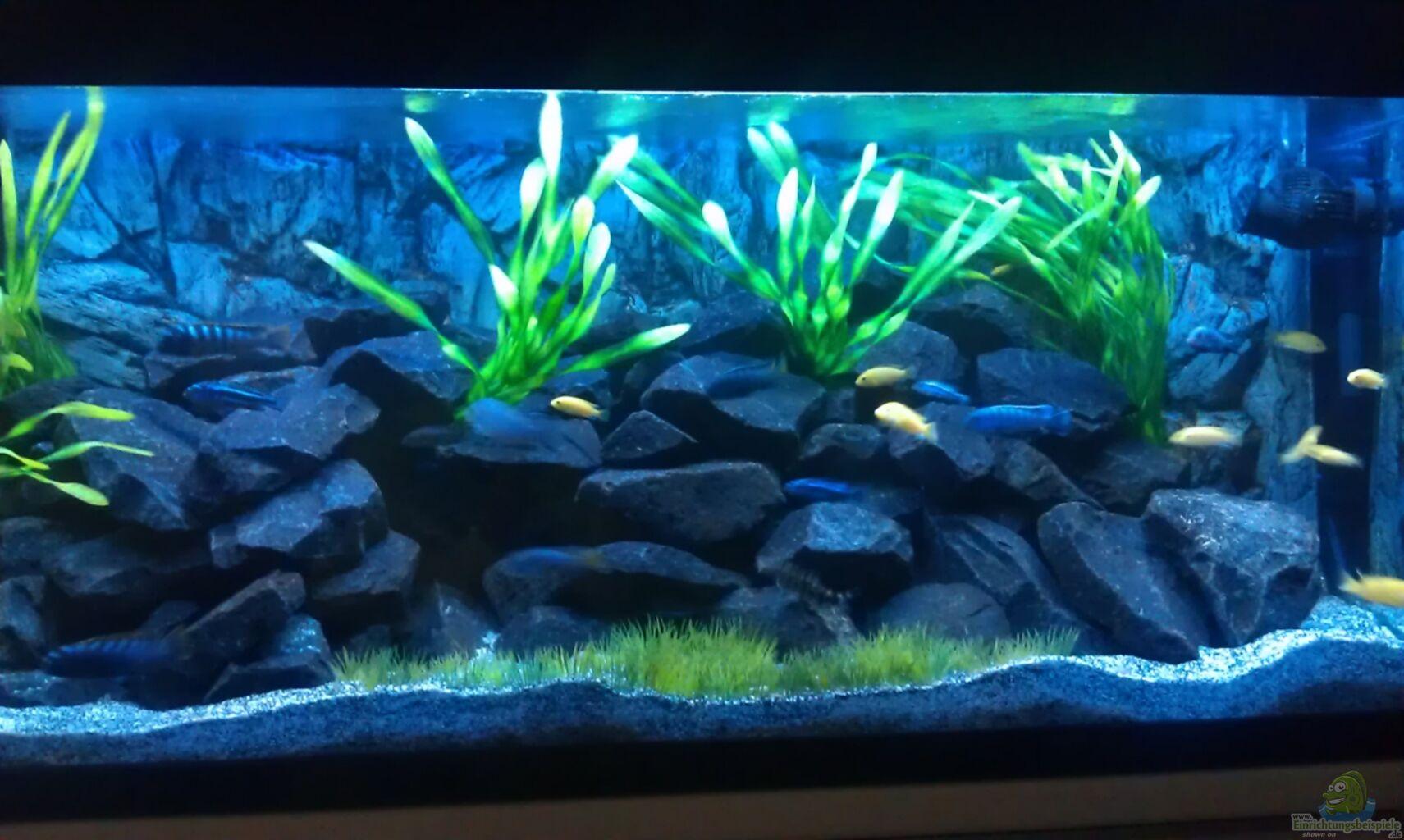 Aquarium von lohmi 5 stone edge for Aquarium 120x40x50