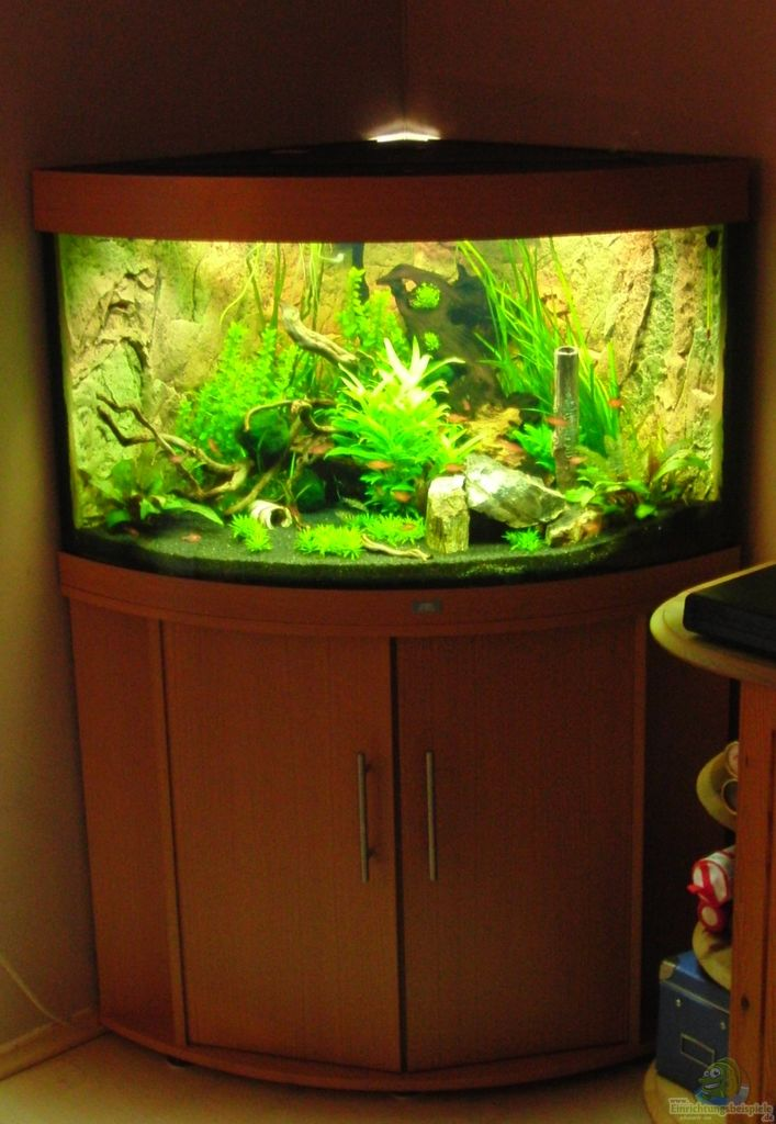 aquarium von mg juwel trigon 190. Black Bedroom Furniture Sets. Home Design Ideas