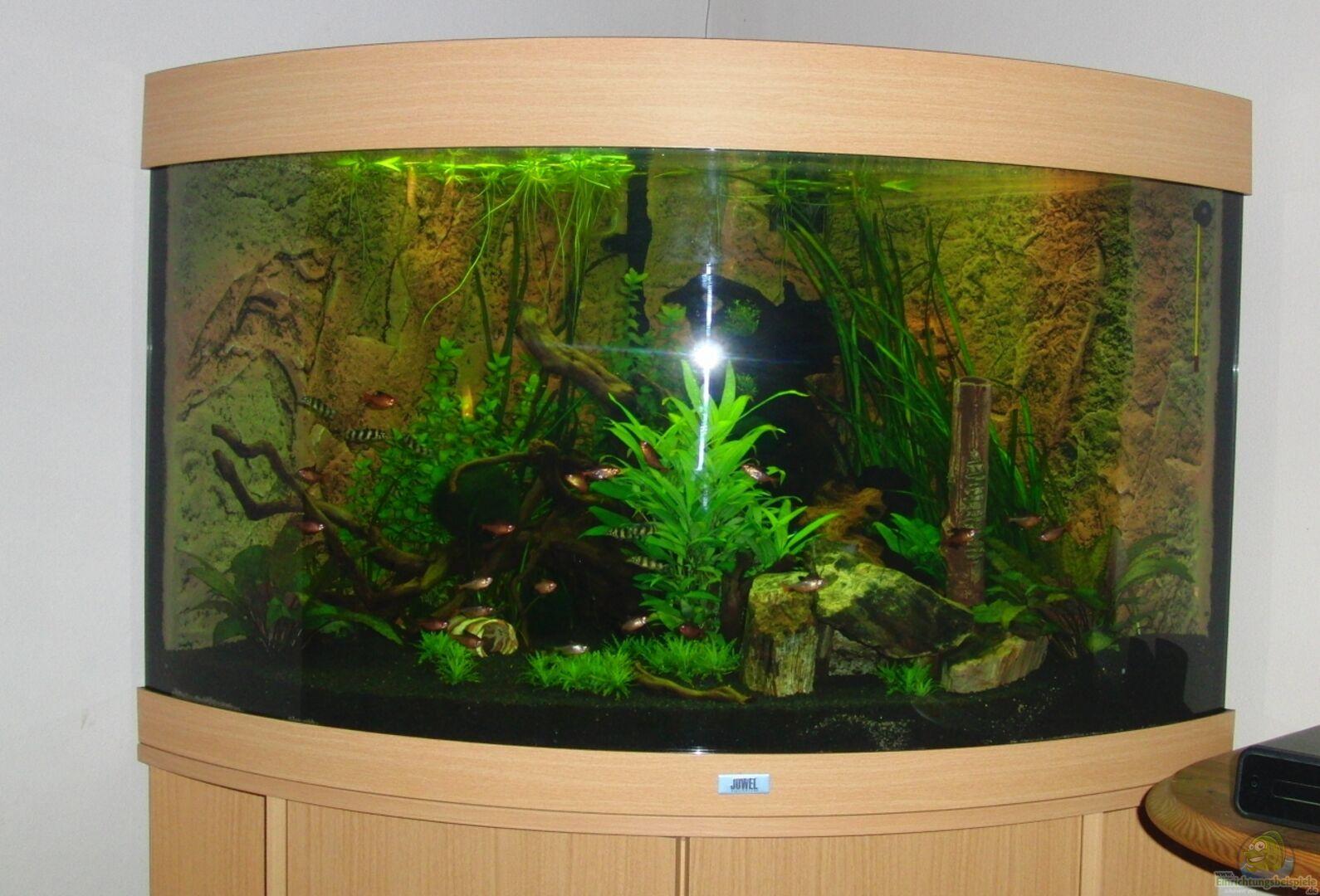 Illuminazione juwel trigon juwel trigon aquarium fish tank t
