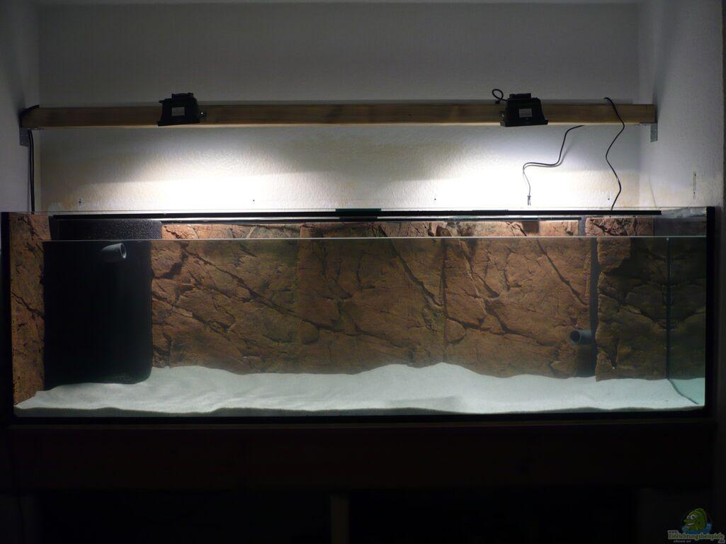 aquarium von der dortmunder mein erstes. Black Bedroom Furniture Sets. Home Design Ideas