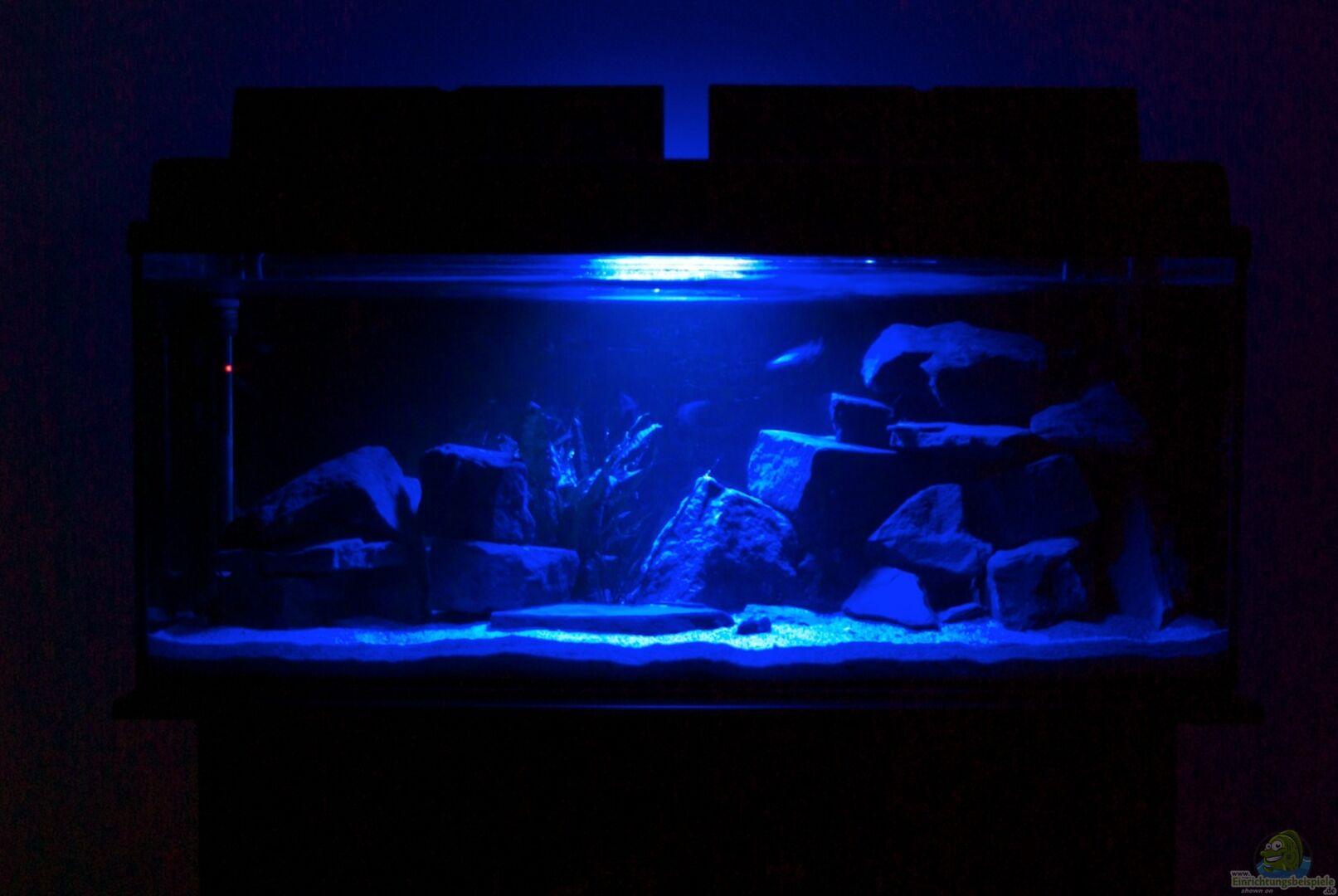 Aquarium Wohnzimmer Dekoration : Aquarium von duder malawikus wohnzimmer