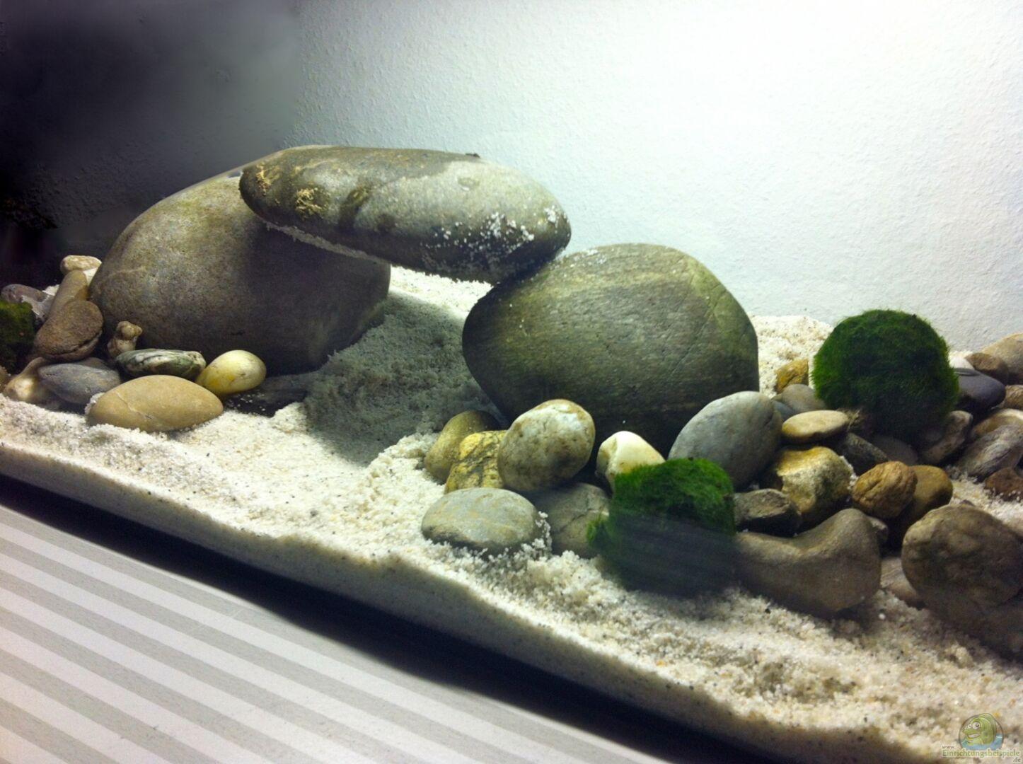 aquarium von linlan 22975 ersatzbecken. Black Bedroom Furniture Sets. Home Design Ideas