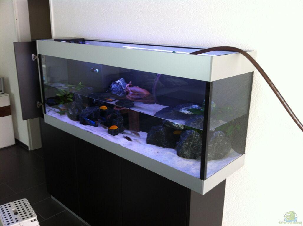 Aquarium von flightsim my malawi dream for Aquarium wasserwechsel