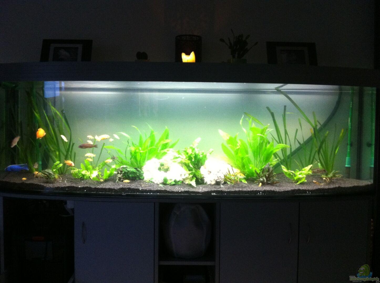 Aquarium von yejo 23517 wohnzimmer - Aquarium wohnzimmer ...