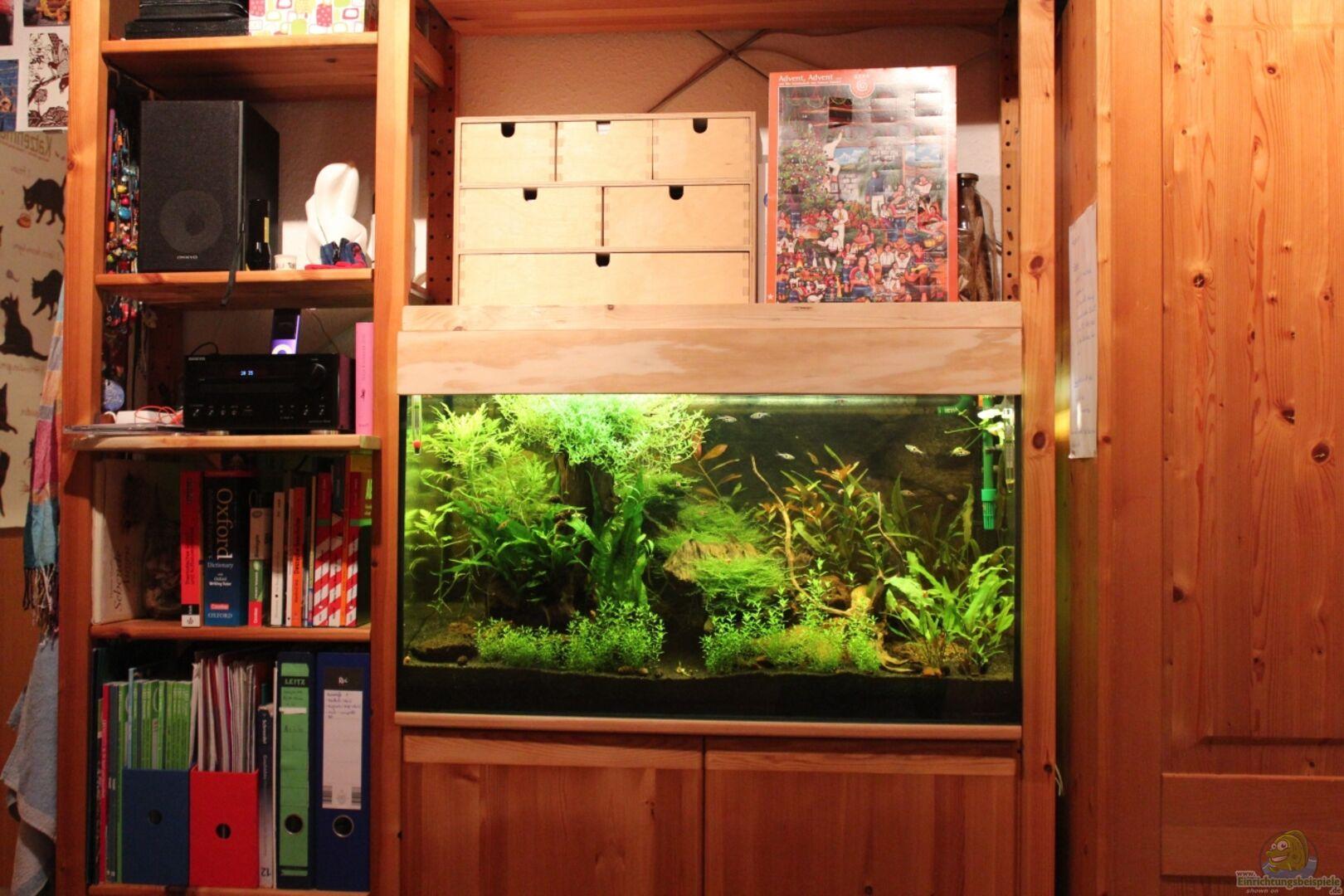 Aquarium Unterschrank Ikea : das verst rkte ikea aquarienregal aus becken 23904 von annika ~ Watch28wear.com Haus und Dekorationen