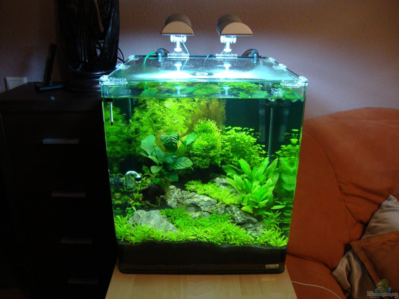 aquarium hauptansicht von nano cube 60 liter aus nano cube 60 liter von christoph luz. Black Bedroom Furniture Sets. Home Design Ideas