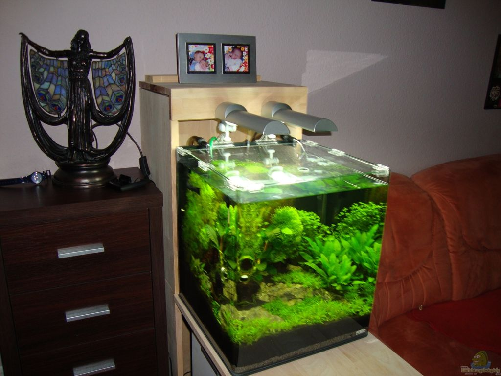 aquarium von christoph luz nano cube 60 liter. Black Bedroom Furniture Sets. Home Design Ideas