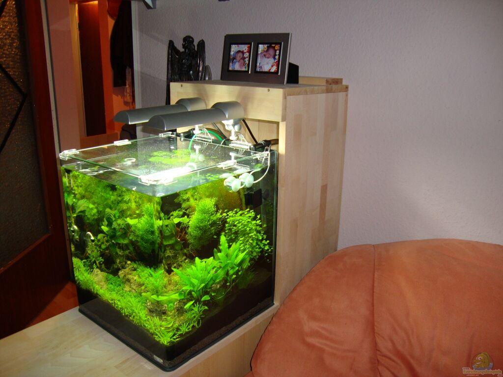 technik im aquarium nano cube 60 liter aus nano cube 60. Black Bedroom Furniture Sets. Home Design Ideas
