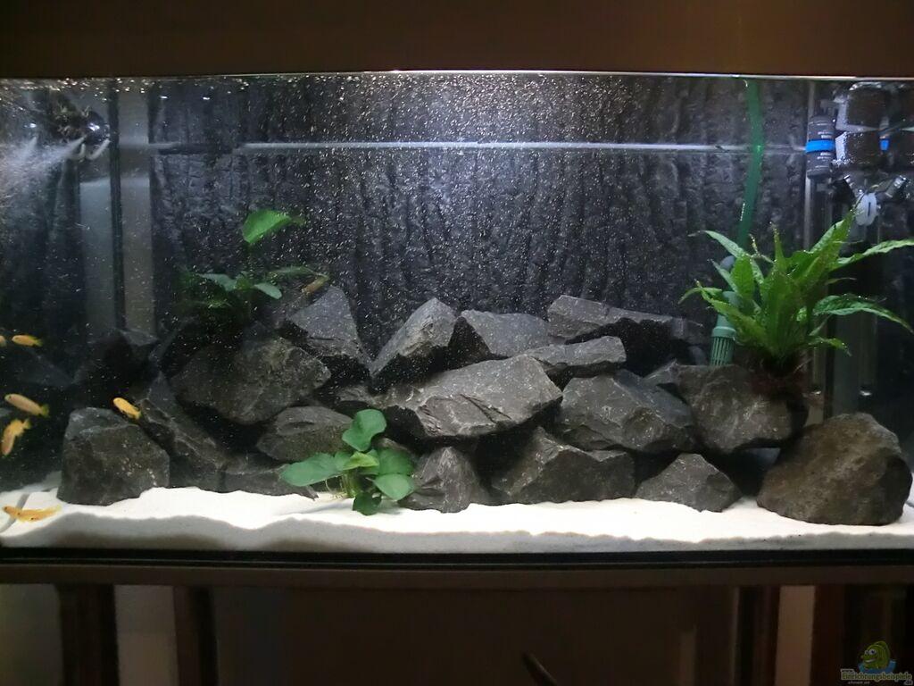 aquarium von joseg becken 24174. Black Bedroom Furniture Sets. Home Design Ideas