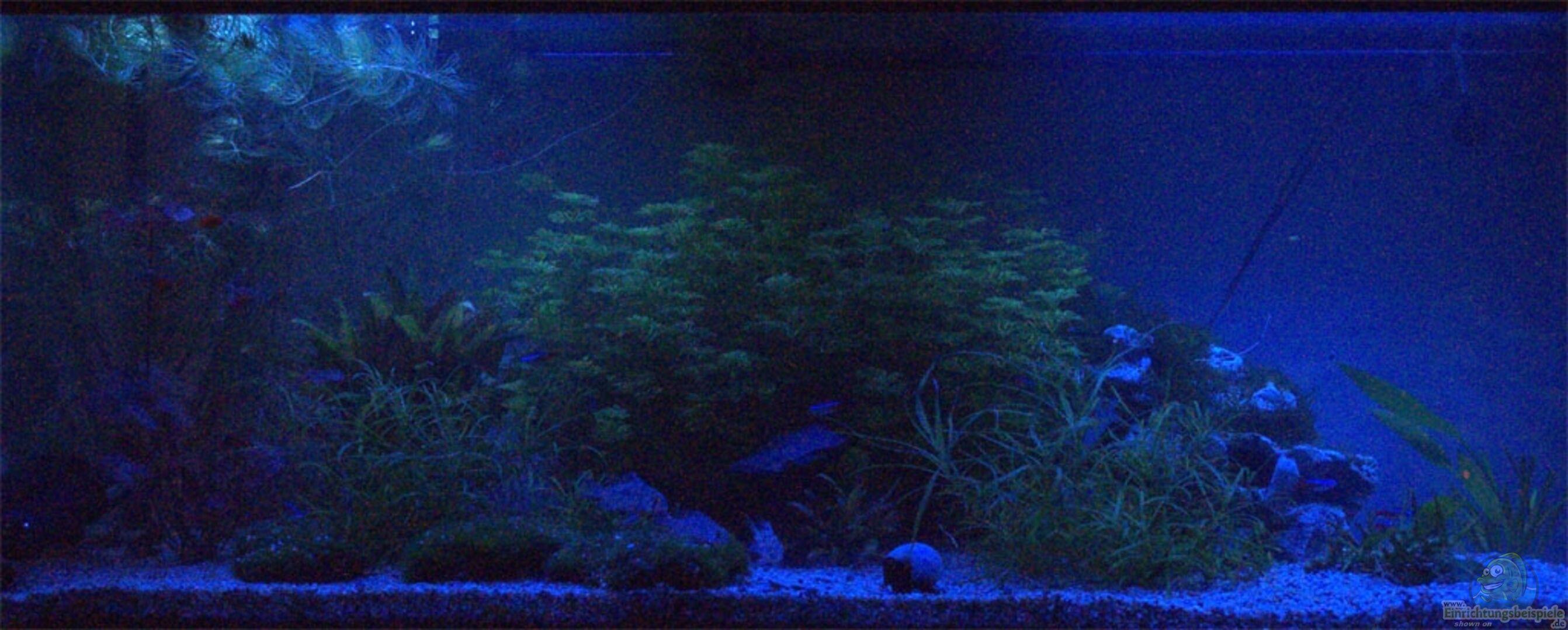 LED Beleuchtung (Blau Und Weiß) Für Dämmerung Und Bewölkung