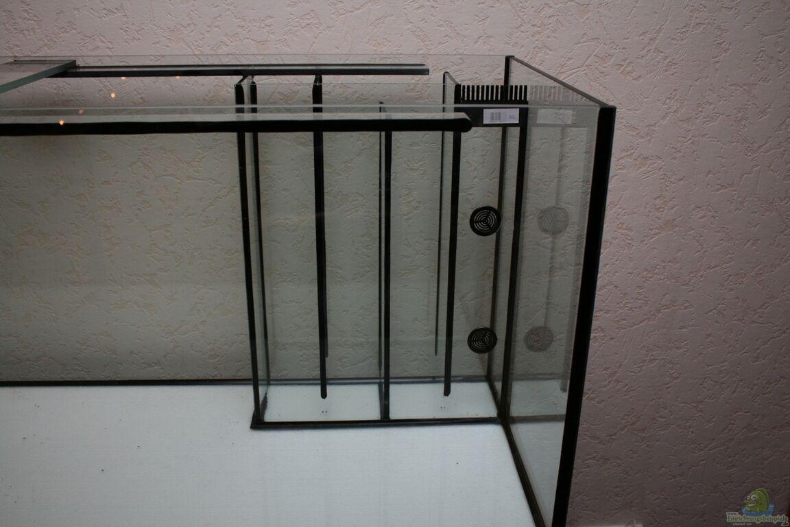 aquarium von guido frece becken 24355. Black Bedroom Furniture Sets. Home Design Ideas
