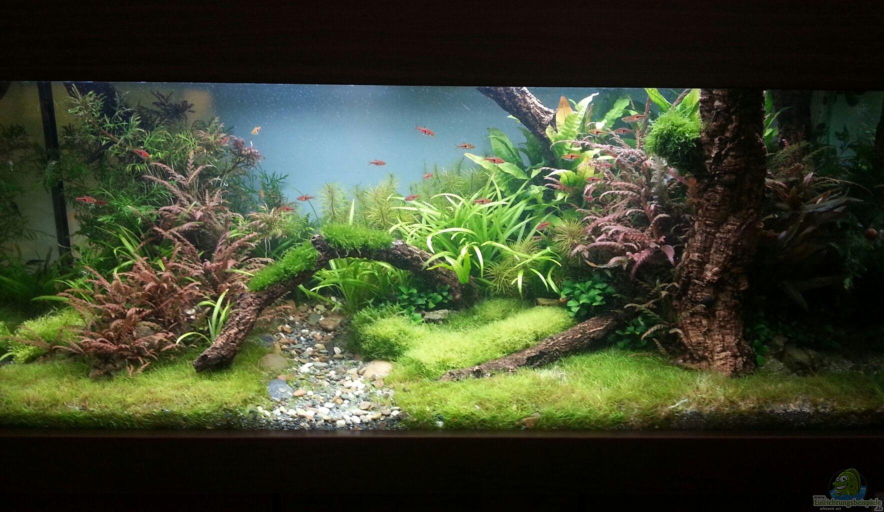 filtermaterial zeolith f r aquarium sunsun hbl hang on. Black Bedroom Furniture Sets. Home Design Ideas