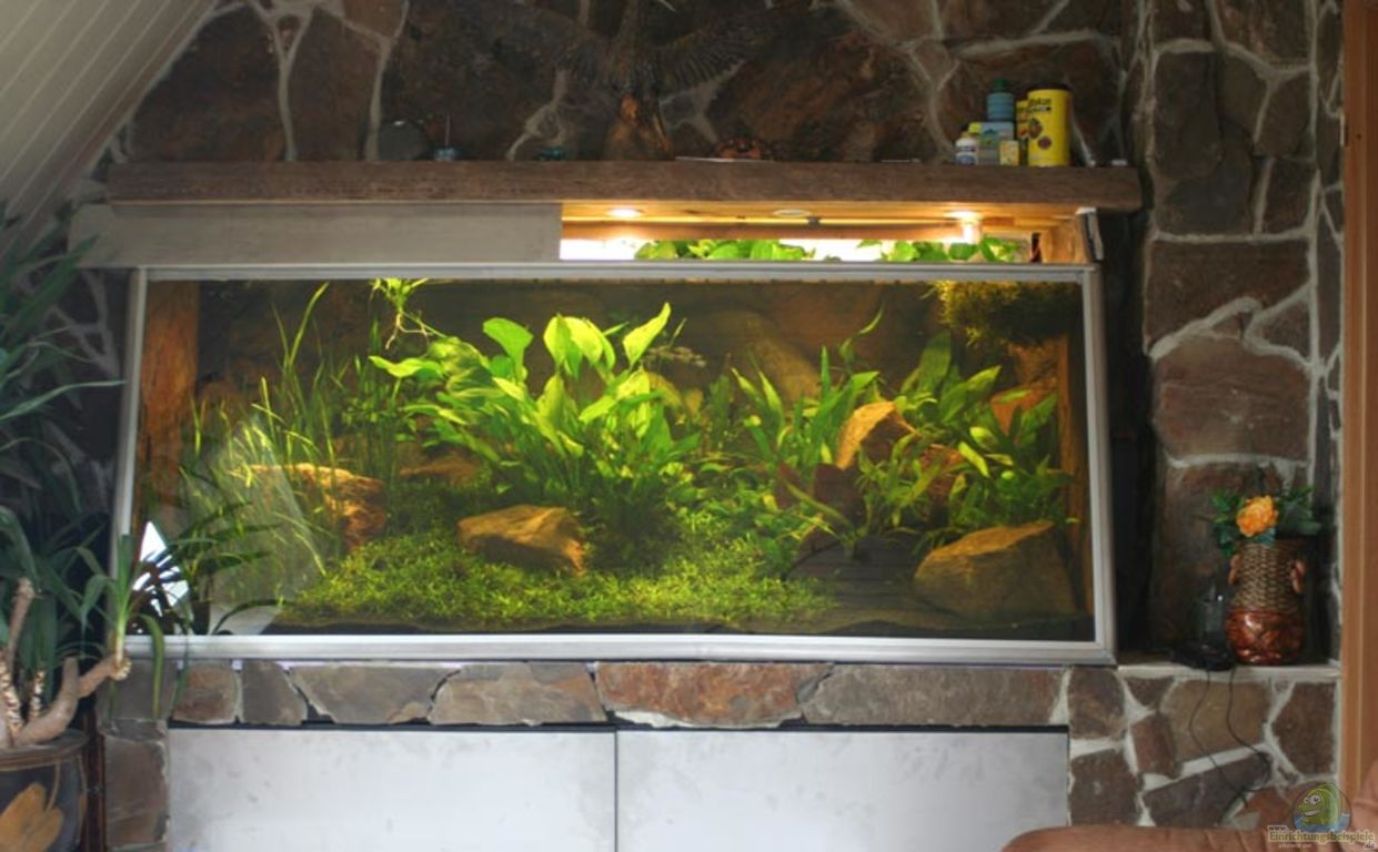 aquarium von marcus schulte becken 2500. Black Bedroom Furniture Sets. Home Design Ideas